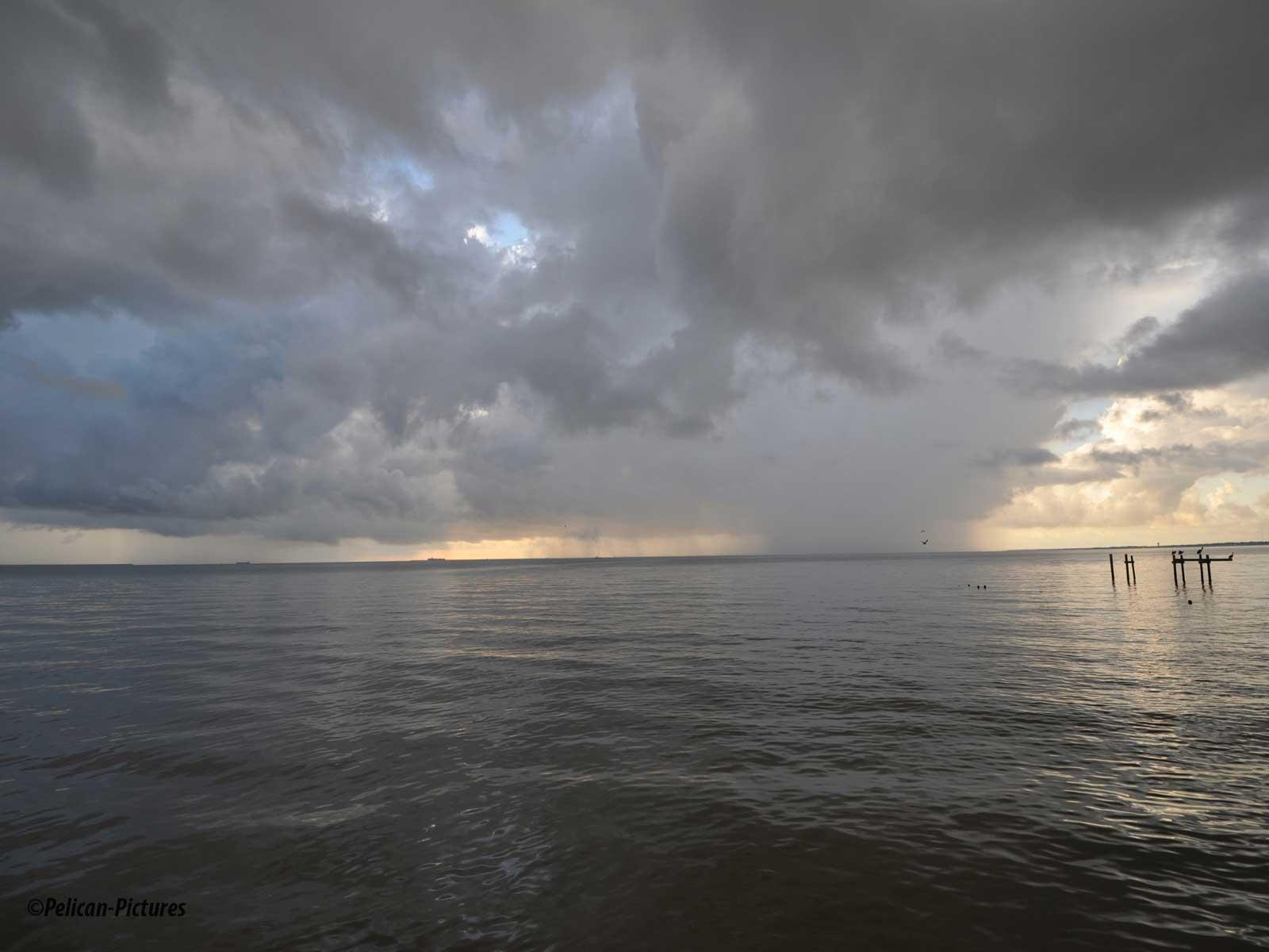 storm-over-kemah-pelican-pictures
